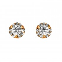 Ladies .500 Ctw Round Cut Diamond Stud Earrings / 14 Kt Y