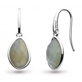 Ladies Silver Earrings / Silver